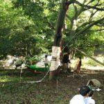 11/20(日) インディと遊ぼう〜ロープ遊び〜